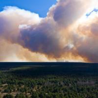 Пожар в Чернобыльской зоне тушат седьмые сутки. Дым подбирается к Киеву