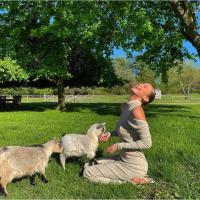 Фермер предлагает людям пообщаться с козами в Zoom. На этом она заработала уже $68 тысяч