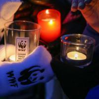 Главной темой акции Час Земли-2020 станет экологический активизм