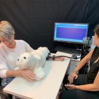 Исследование: робот-тюлень поможет людям стать счастливее