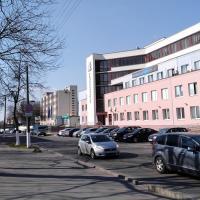 Деревья или бесплатные парковки? Гомельчане подписали петицию против расширения улицы в центре города
