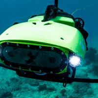 Робот LarvalBot засеял первые коралловые рифы