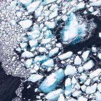 Знаменитый айсберг А68, который был самым большим в мире, растаял окончательно
