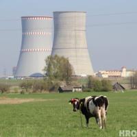 ЕС может ввести санкции против властей Беларуси в энергетической сфере