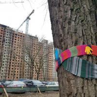 Вырубка деревьев в Грушевке прекращена. И что дальше?