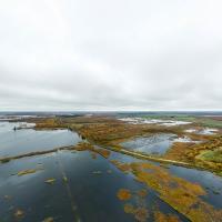 Новый закон об охране болот поможет Беларуси в реализации Парижского соглашения
