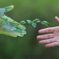 Больше всего в Беларуси доверяют экоактивистам