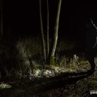 Фоторепортаж: Как ночной дозор охраняет нерест лосося