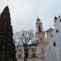 Жизнь соседей. Ёлку в Каунасе освещает кофейная гуща