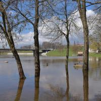 Большая вода в Могилеве (фоторепортаж)