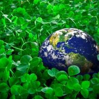 300 тысяч евро на улучшение экологии получили шесть районов Беларуси