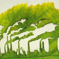 Почему Новой Беларуси нужен зеленый курс? И что это вообще такое?