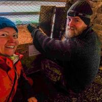 Домики для сипух. Как представительница Зелёной сети волонтерила на крышах беларусских храмов
