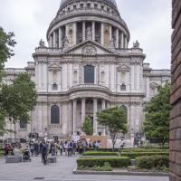 Архитектор из Литвы создала в центре Лондона уголок родного леса