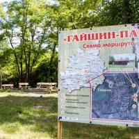 В отселённой деревне Гайшин планируют развивать агротуризм. Безопасно ли там отдыхать?