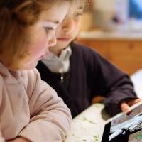 Мобильное приложение Virry знакомит детей с дикой природой в онлайн-режиме