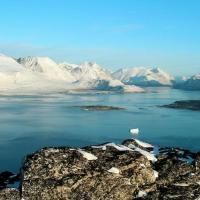 Стремительное изменение климата в Гренландии повлияет на всех нас