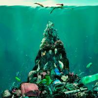 Добро пожаловать в «пластисферу» – синтетическую экосистему, созданную человеком