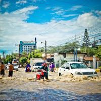 За полгода более 10 миллионов человек переехали из-за климатических катастроф