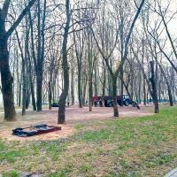 Мнение. Деревья-однодневки – новое слово в беларусской урбанистике