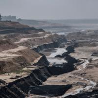 Слоновий дом и угольная мафия. Как коренные народы Индии пытаются спасти свой лес