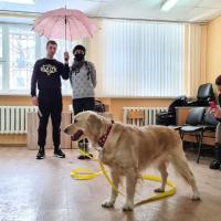 Собачья работа. Кто такие собаки-адвенторы и почему их работа нужна человеку