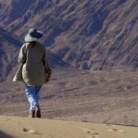 В Долине Смерти зафиксировали рекордную температуру