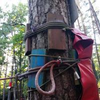 Гвоздями и шурупами. Как в Гродно организовали «Джунгли парк» (а можно и по-другому )