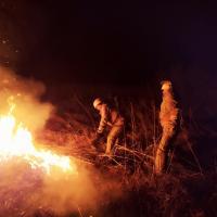Горят леса и болота. В Украине – зона отчуждения, в Беларуси – Ольманы