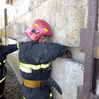 Как жлобинские спасатели вытаскивали щенка из-под бетонных плит