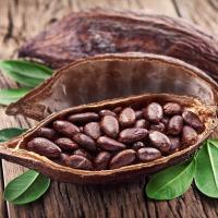 Оказывается, какао – это топливо не только для души