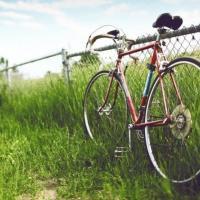 Хотите прокатиться на велосипедах по Беларуси? Зелёный портал вместе с EuroVelo нарисовал маршруты путешествий