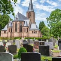Раки-мутанты захватили кладбище в Бельгии