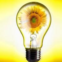 Обьявлен конкурс проектных инициатив по реализации энергоэффективных мероприятий в учреждениях образования