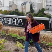 Зеленые пространства и фермы на крышах. Как решить проблему продовольствия в условиях стремительного роста городов и глобального изменения климата