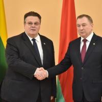Литва и Беларусь договорились рассмотреть рекомендации экспертов до пуска БелАЭС