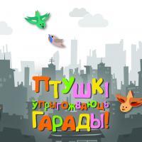 Фотографируйте бигборды с птицами: в Минске появилась новая социальная реклама