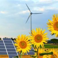 В 2014 году глобальные инвестиции в альтернативную энергетику увеличились до 290 млрд евро