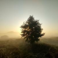 Обыски на агроусадьбах – это репрессии. Заявление экологов Беларуси