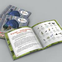 Вышла книга для детей про птицу 2020 года — глухаря