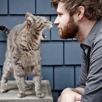 Полезно ли кошкам сухое вино? Пять наивных весенних вопросов к ветеринару