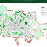 «Экодом»: Мингорисполком нарушил законодательство о растительном мире