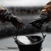 Греция очищает побережье от нефти