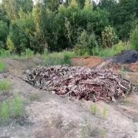 В 15 км. от Минска неизвестные выгрузили кучу останков животных