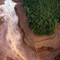 В Бразилии произошла крупнейшая экологическая катастрофа. Последствия угрожают всей Атлантике