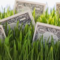 Первые шаги «зелёной» экономики в Беларуси. Часть 1