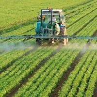 Исследование: интенсивное сельское хозяйство увеличивает риск эпидемий