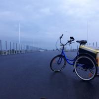 «Идеальный транспорт!» О том, как совместить бизнес и карго-велосипед