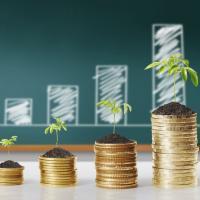 Ия Малкина: «Замечания общественности учли в национальном плане по развитию «зелёной» экономики»