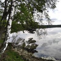 Свитязь мелеет. Людей на берегах самого известного озера Беларуси отдыхает все больше, а воды становится все меньше